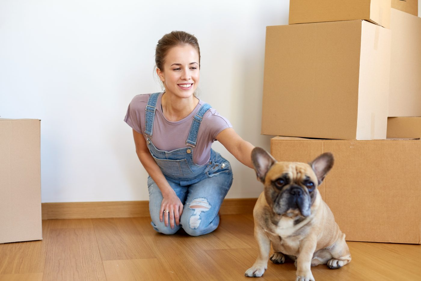 Five Tips When Relocating Homes With Family Pets